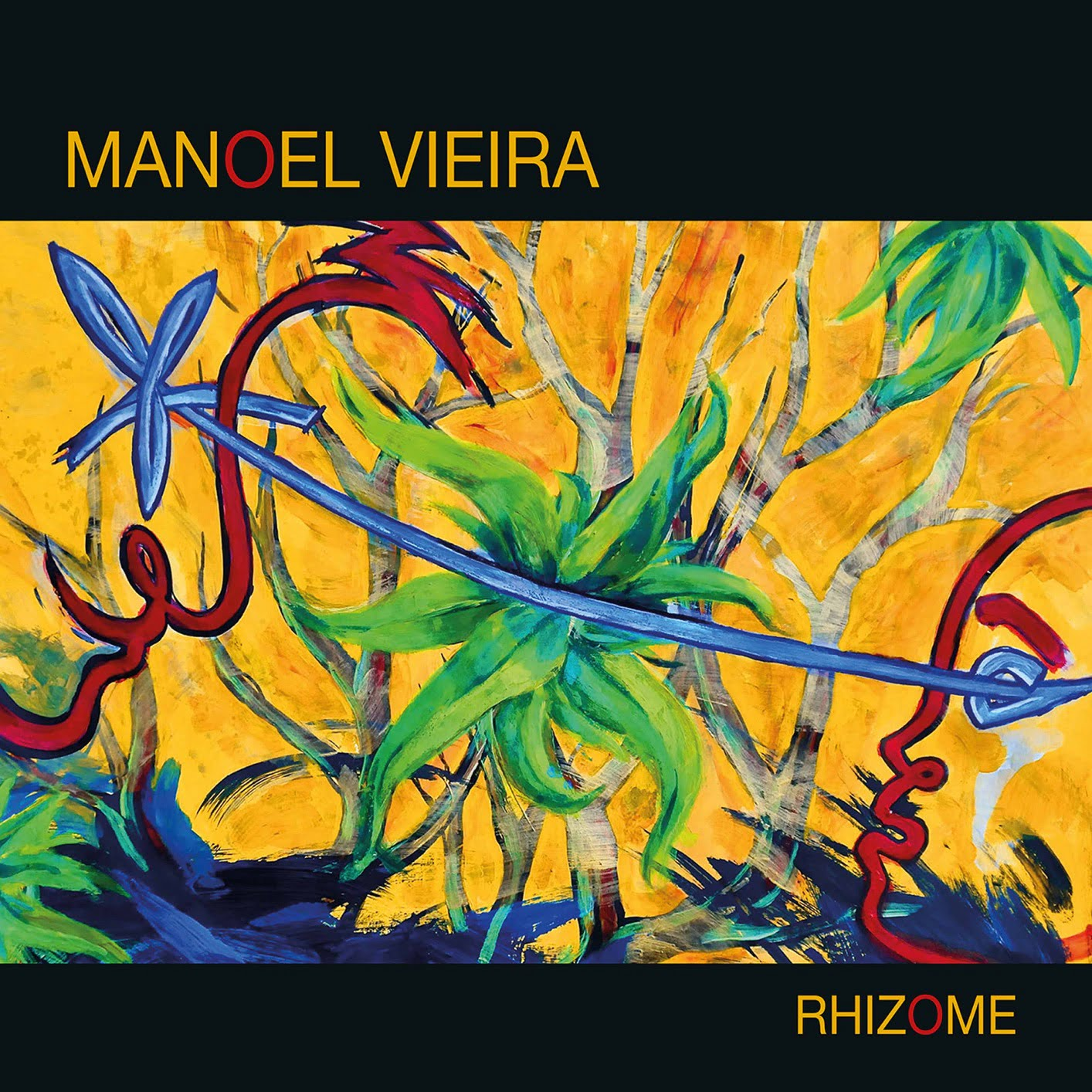l'album Rhizome de Manoel Vieira